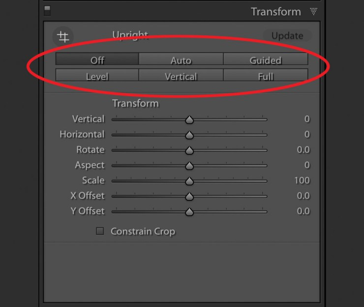 Transform Tool - Default Options