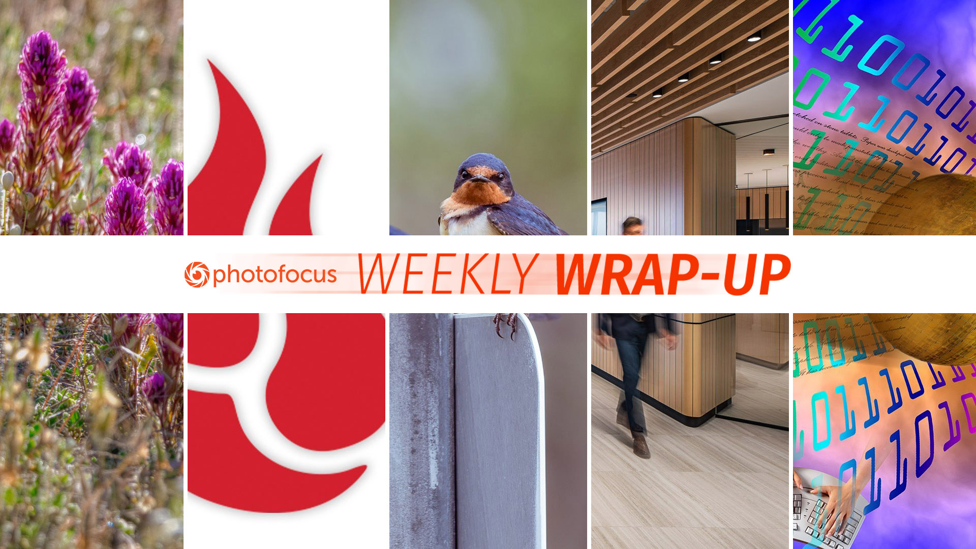 The Photofocus Weekly Wrap-Up for May 19-25