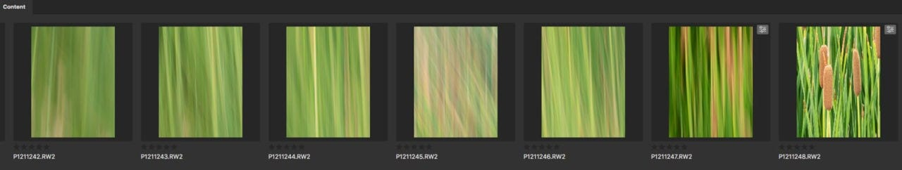 screen capture of photos
