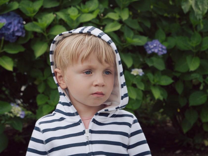 Leica 12-60 review