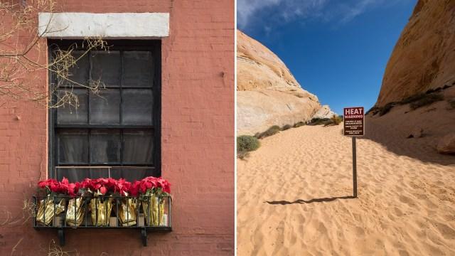 Understanding Light: A new webinar from Drobo and Photofocus