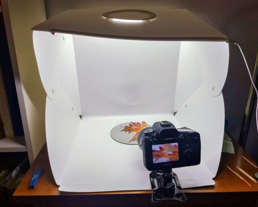 Platypod mirror leaf macro set up