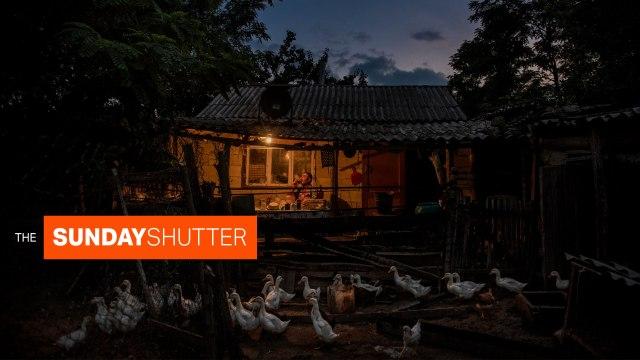 The Sunday Shutter: December 29, 2019