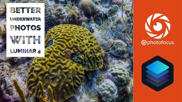Better underwater photos with Luminar 4