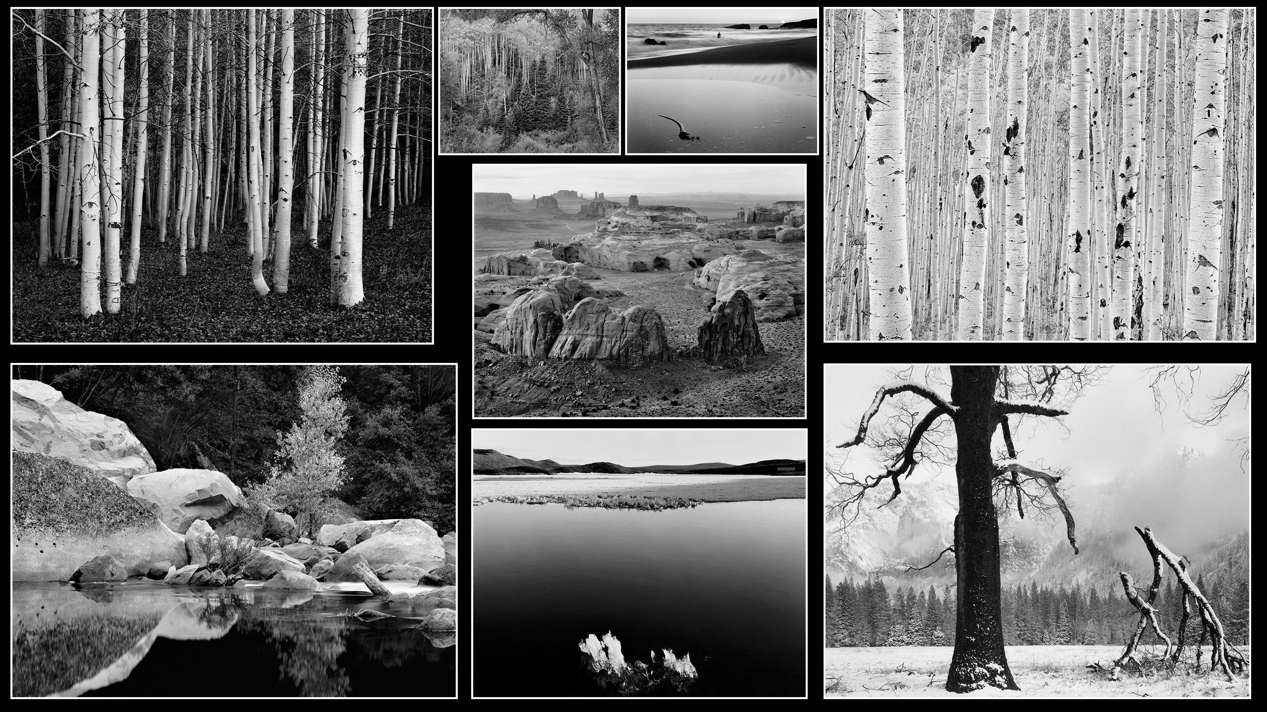 On Photography, John Sexton