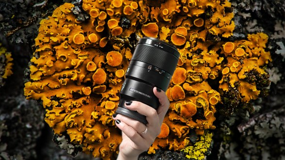 Hands-on with the Sony 90mm f/2.8 macro lens