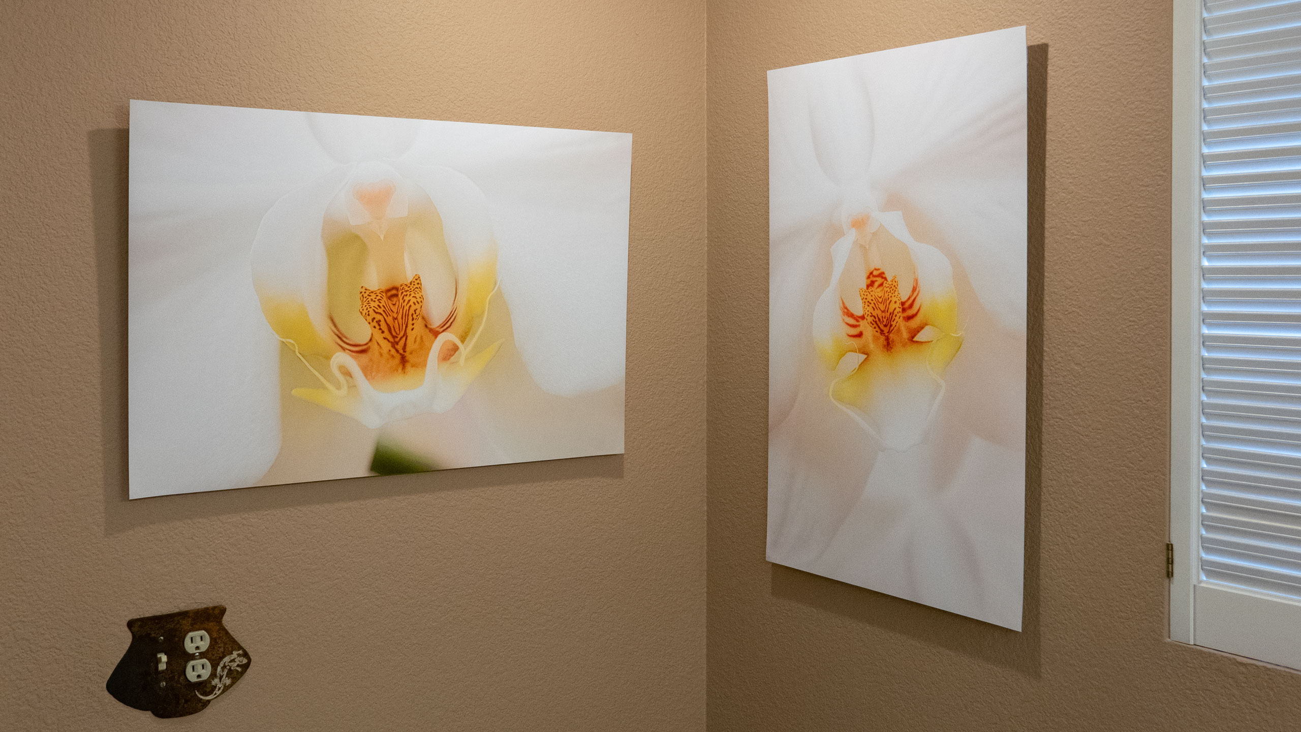 The Xpozer 4Pack: Changeable art for your walls