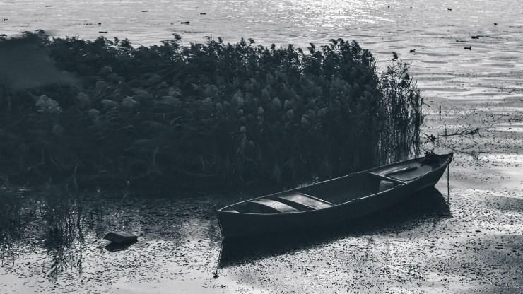 Sailing through hard times