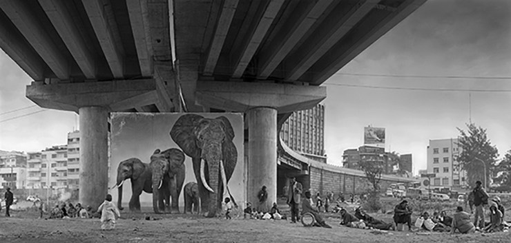 On Photography: Nick Brandt, 1964-present
