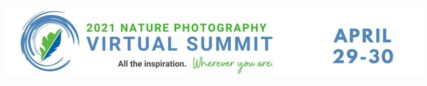 nanpa virtual summit banner