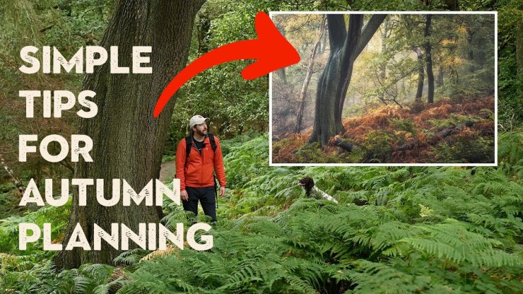 How I get ready for Autumn Photography + Woodland Composition Tips - youtube