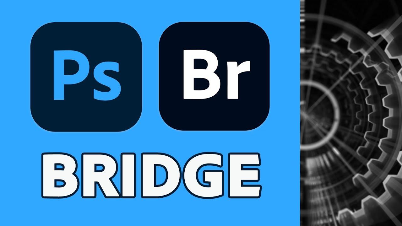 Unlock the power of Adobe Bridge, with this free class