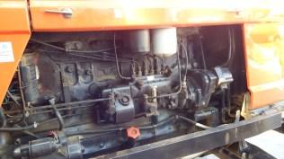 DSCF6435
