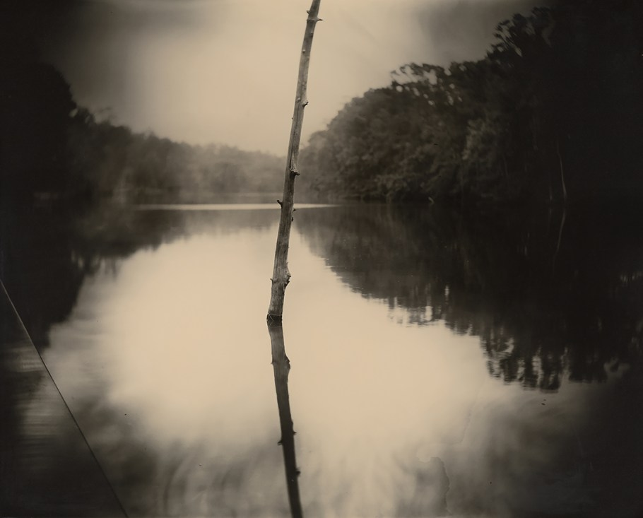 Sally Mann- Série Deep South-Untitled (stick) 1998- New-Orleans Museum of art