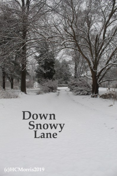 This image has an empty alt attribute; its file name is down-snowy-lane-words.jpg