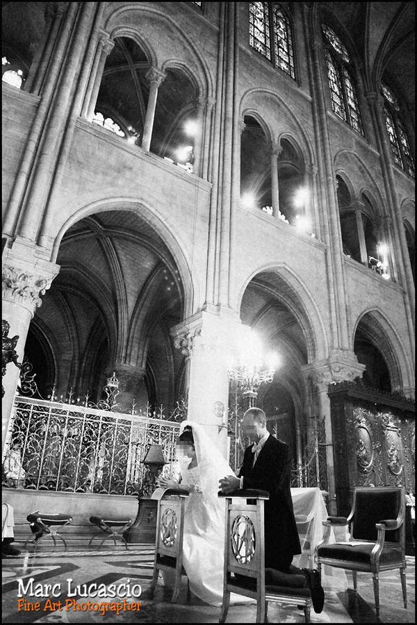 La cathédrale de lumière Notre Dame