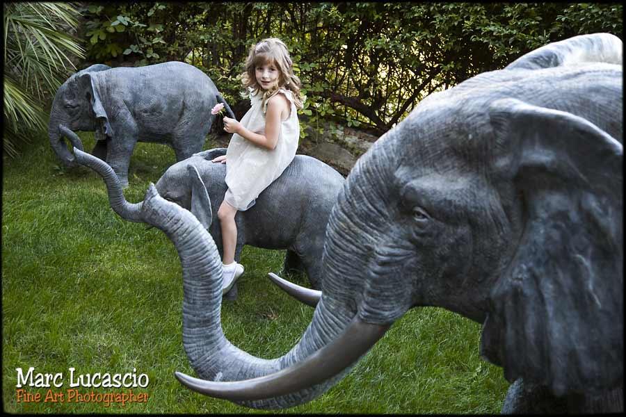 enfant la chasse aux éléphants