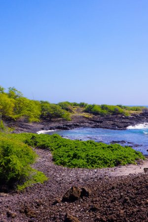 Maui Lava Fields Photography