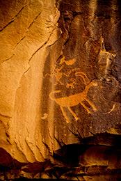 Big Horn Sheep Petroglyph - Nine Mile Canyon Utah
