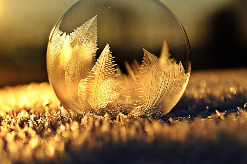 Glass Ball Photography Tips Photographers Resource Center