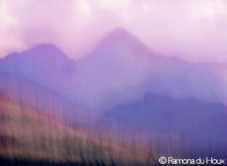 Purple Mts. Majesty
