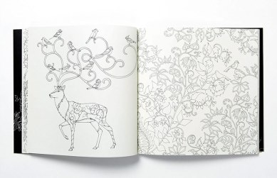 coloring-books-for-adults-johanna-basford-2__880