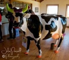 Caldermeande Dairy Farm & Cafe