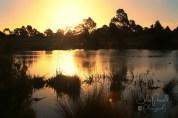 Autumn Sunset--2
