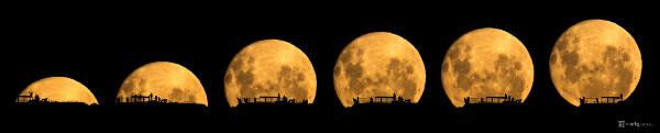 Mark Gee moon silhouettes seq