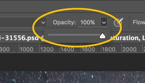 Set brush opacity 100pct