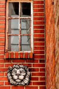 Window Above - Photographer Alex Sablan