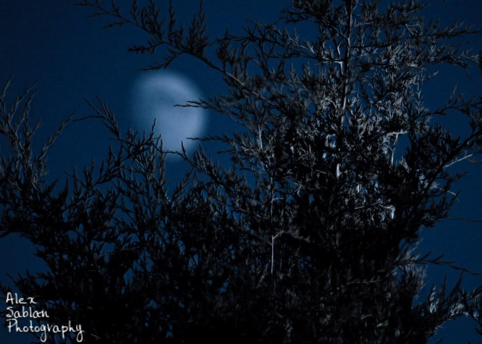 Bokeh Moon