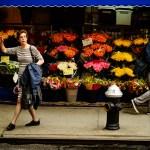 Cozy Corner Flowers in New York City Photo