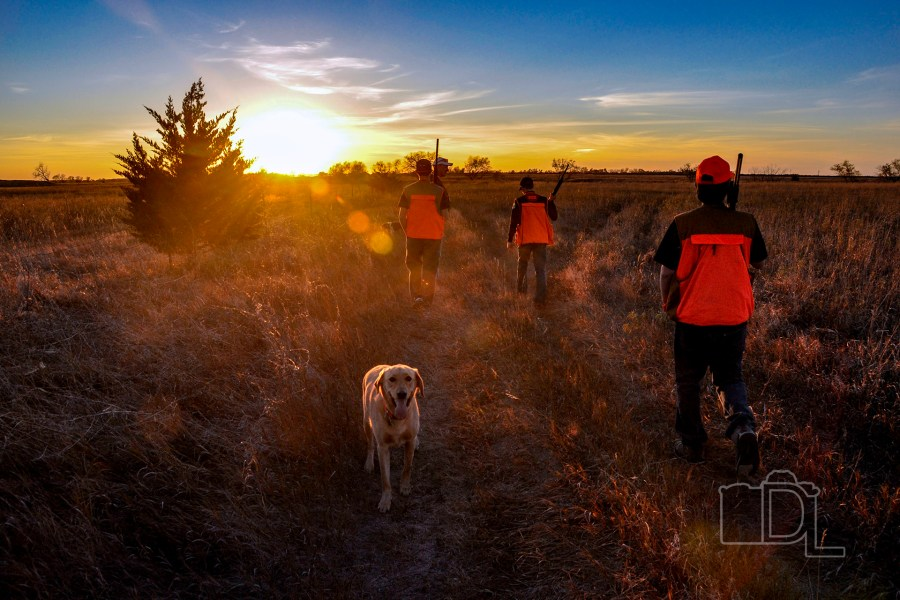 The setting sun signifies the end of a pheasant hunt.