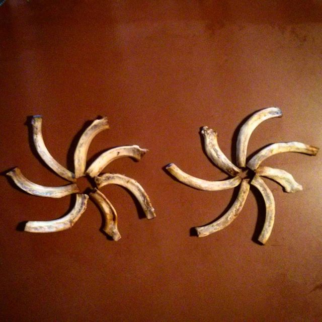 two windmill patterns made from rib bones