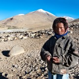 A young Changpa nomad