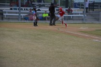 Rangers Little League 013