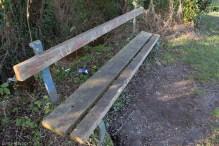Bench 6: Brook 1