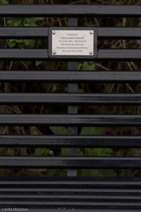 Bench 7: 4:- Grassy Corner There has been a bench here for very many years. But the current new bench was put here in memory of Reebecca Jane Chamberlain who was a keen rower, killed in a car crash in 2012 at the age of 21.