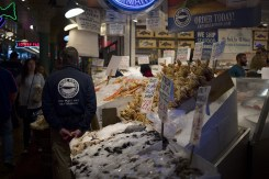 Shellfish on ice at a fishmongers stall at Pike Place Market in Seattle