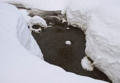 Image of a small stream emerging from between two large snow banks at First Lake on Dog Mountain