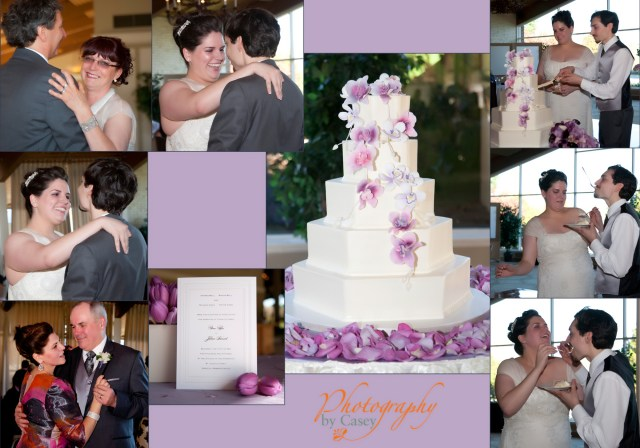 Wedding Reception Photographer Spring Valley Country Club Sharon MA