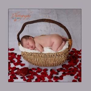 Newborn sleeping in basket