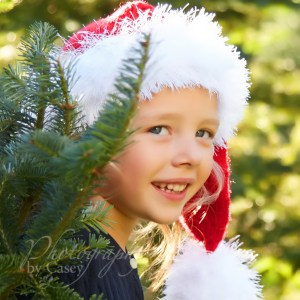 Tree Farm Christmas photography