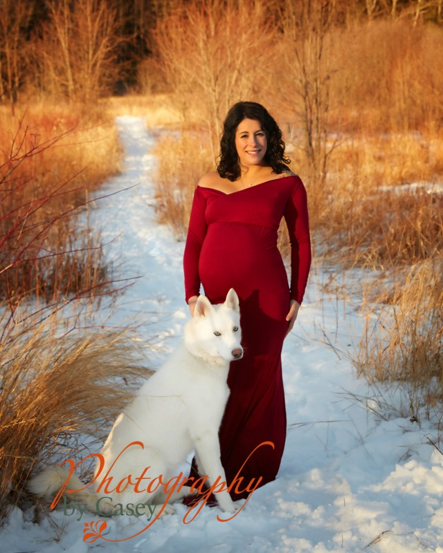 outdoor maternity photoshoot with pets