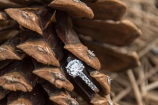 Engagement ring in pinyon pinecone at the South Rim Grand Ganyon
