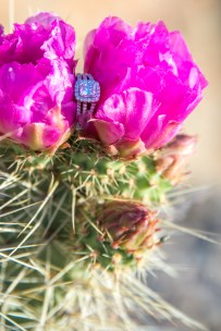 Engagement ring in a colorful cactus