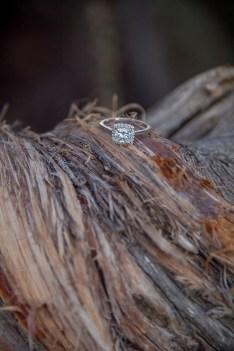 10.8.17 Proposal at Grand Canyon South Rim Terri Attridge-4