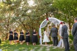 Getting Married in Arizona