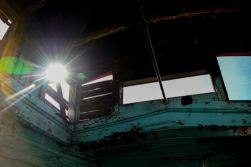 1.8.19 LR Death Valley Trip photography by Terri Attridge-385
